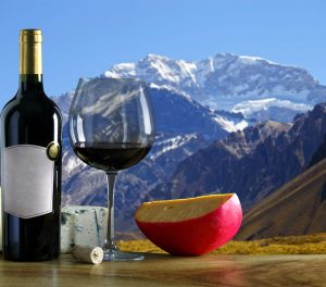 Red wines from Mendoza
