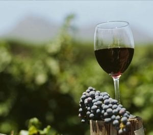 Red wines from Rioja Spain