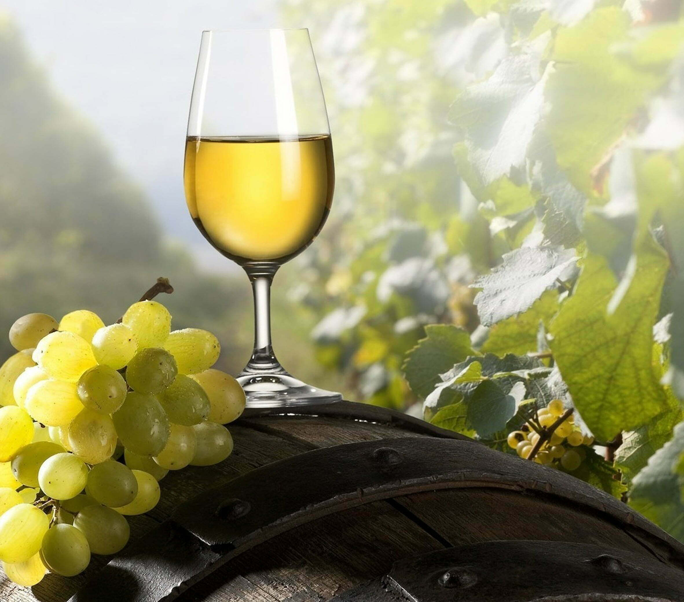 Good blends in white wines