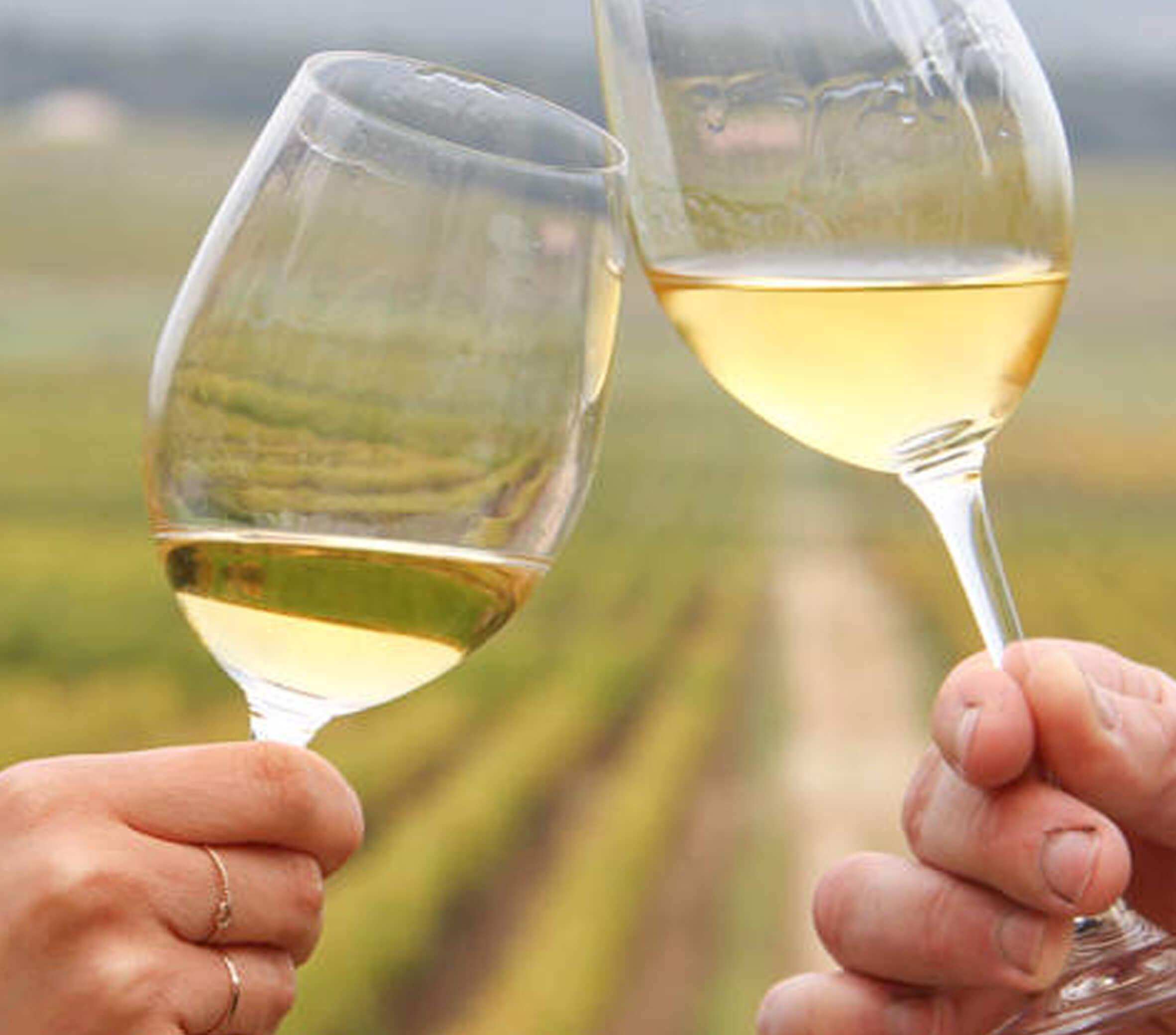 Legendary white bordeaux wine