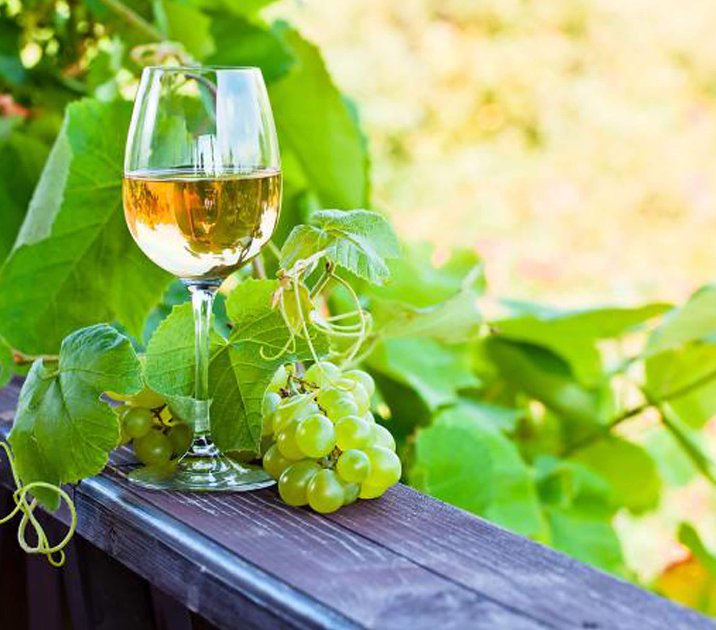 Best white wines are riesling