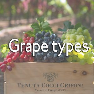 Grape types