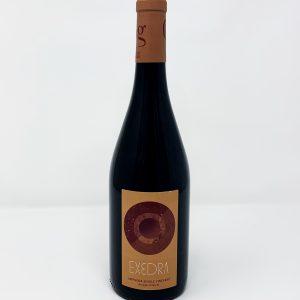 Bodegas Puiggros Exedra Amphora Single Vineyard
